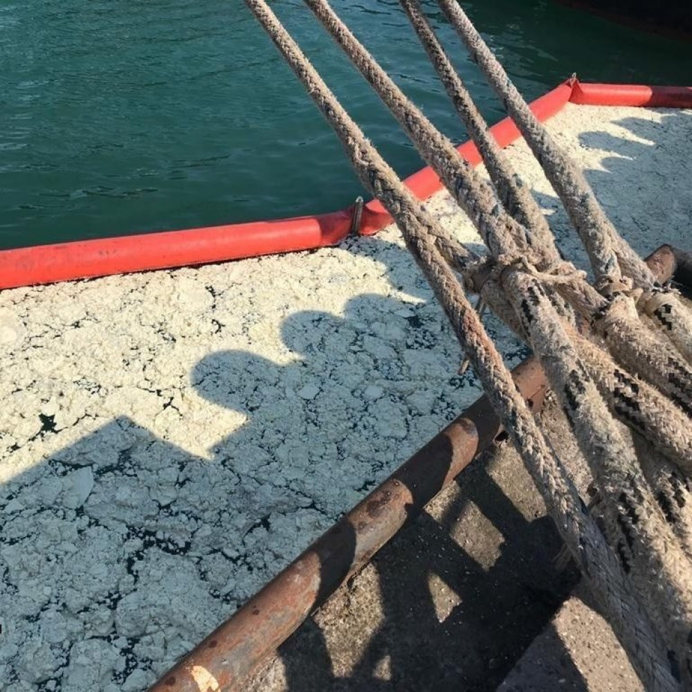 Тонны пальмового масла в акватории порта «Южный» нанесли ущерб экологии на 65,2 млн грн