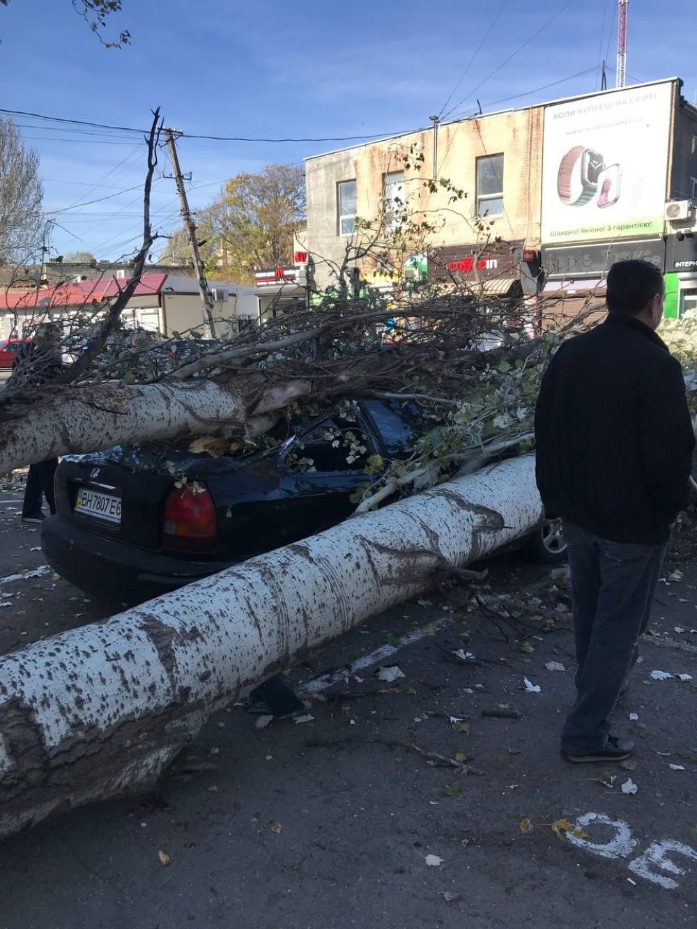 Из-за сильного ветра // На Одария тополь рухнул  на 4 авто // На Французском бульваре веткой пришибло мужчину