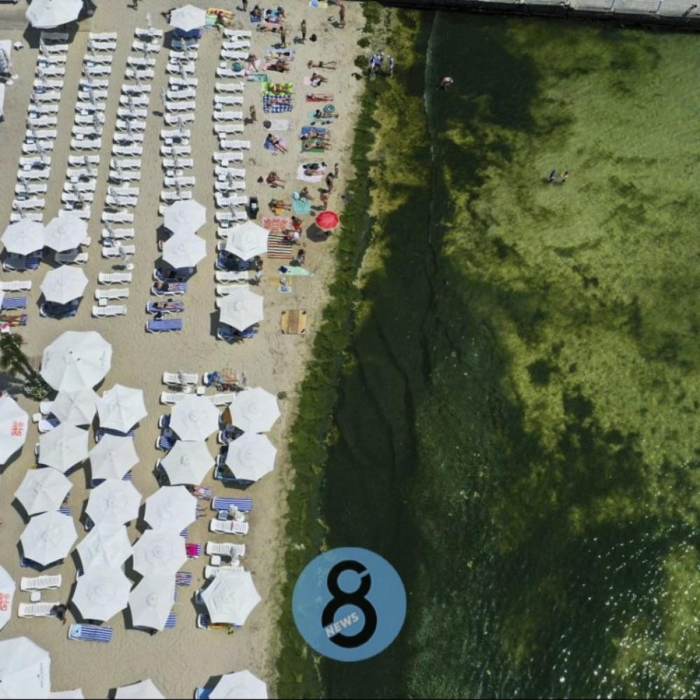 Купаться можно // Вода на одесских пляжах безопасна для отдыхающих