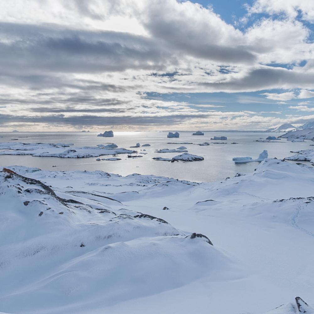 Антарктическая станция «Академик Вернадский» набирает команду для 27-й экспедиции // Нужны ученые, повар, врач и сисадмин