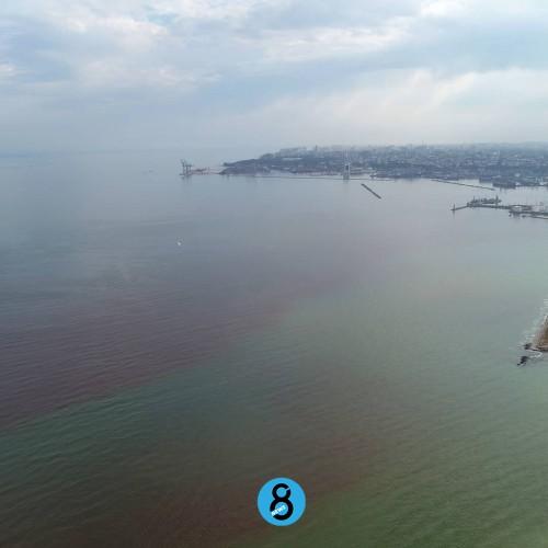 Почему Черное море стало красным и как это связано c катастрофой на Камчатке // Мнение ученых