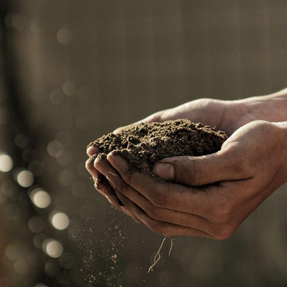 Бизнесмена подозревают в присвоении 1300 га земли стоимостью 80 млн грн