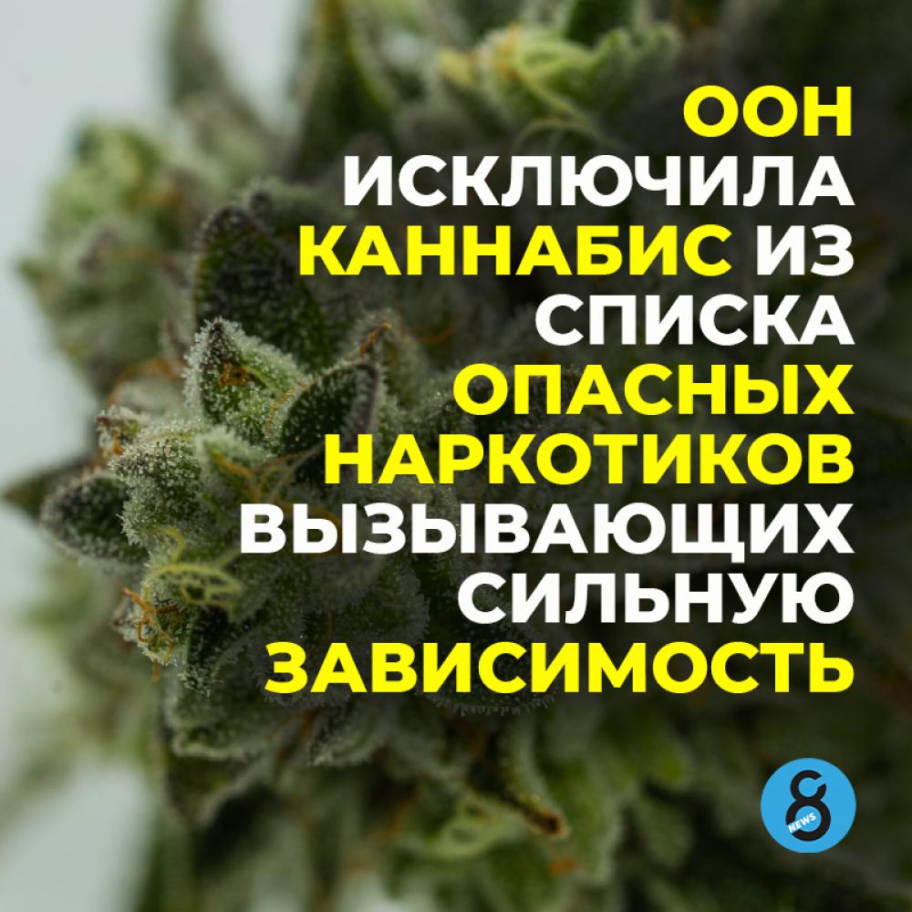 ООН исключила каннабис из списка опасных наркотиков, вызывающих сильную зависимость