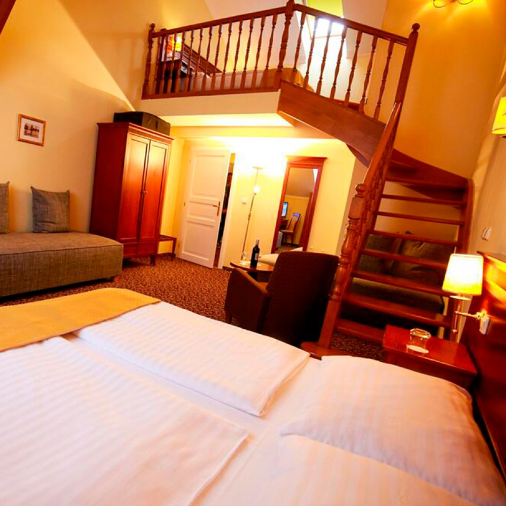 В Праге открыли отель для больных короной