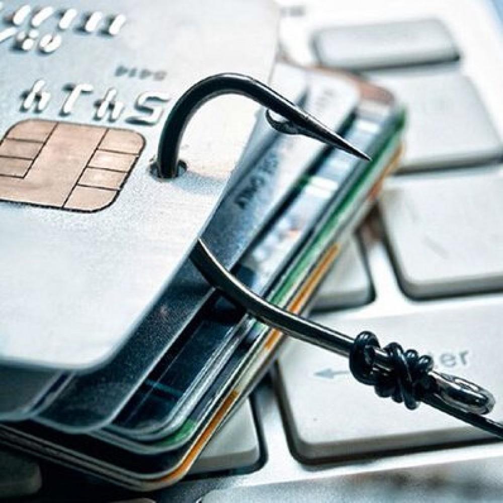 Не ведитесь // Мошенники под видом сайта «Дія» воруют банковские данные украинцев