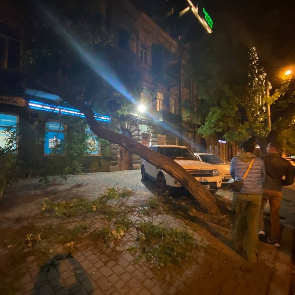 В центре Одессы дерево рухнуло на памятник архитектуры
