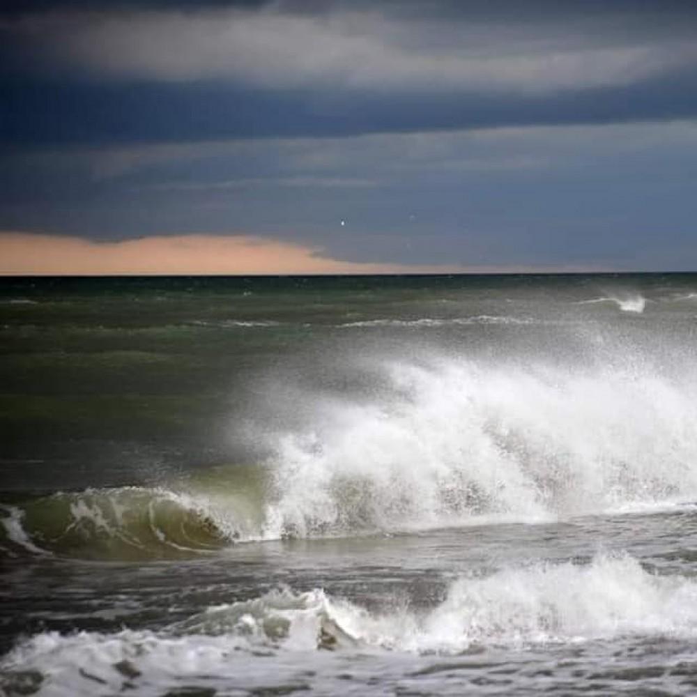 «Зеленый прилив» // Из-за дождей в Одесской области «зацвело» Черное море