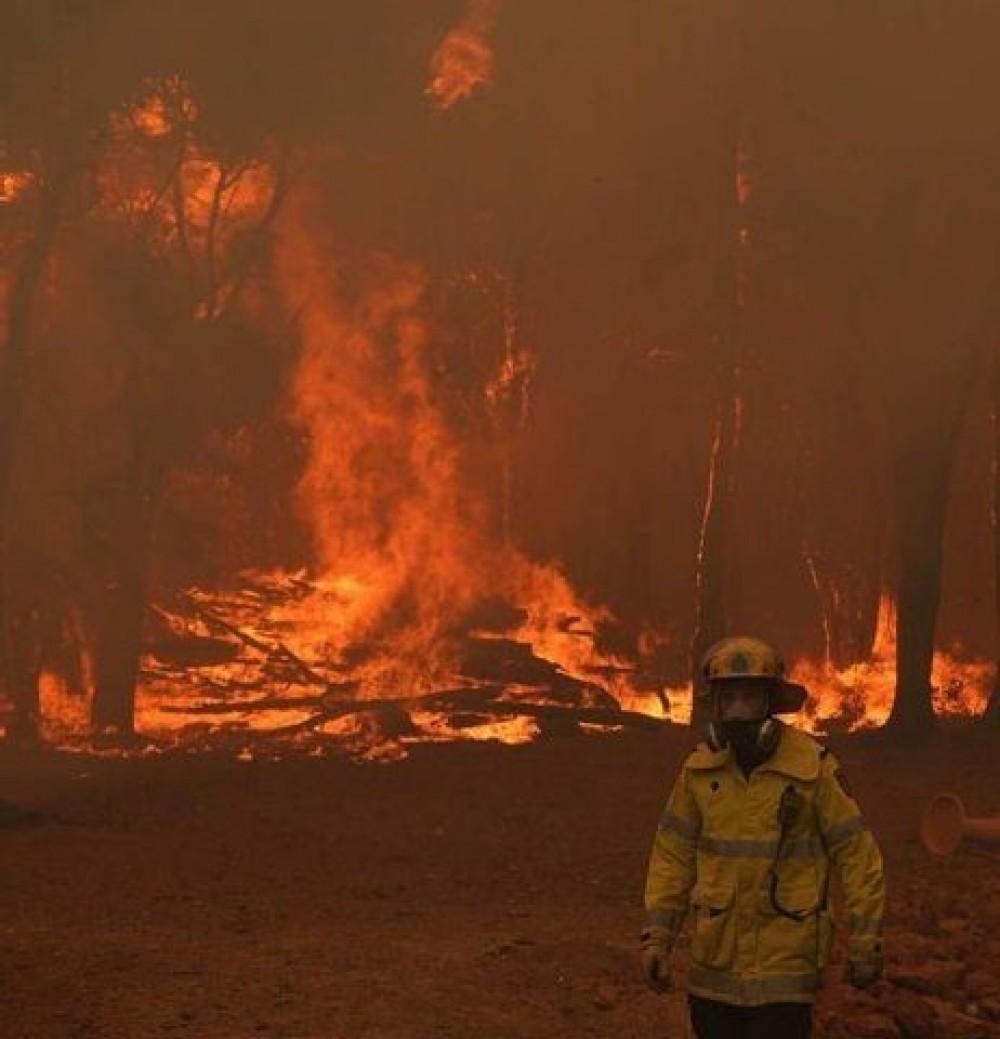 Австралия снова в огне // За 4 дня стихия уничтожила 10 тыс га лесов