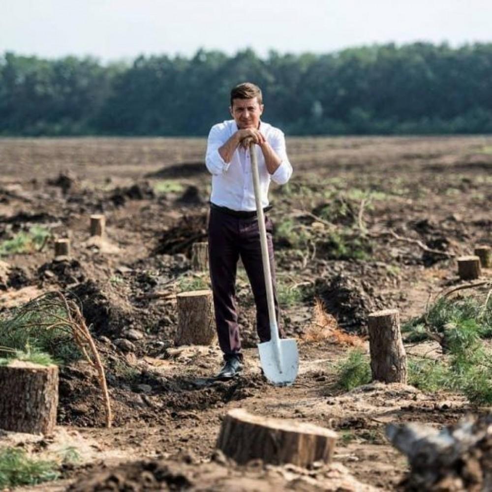 Большая посадка //Зеленский намерен высадить миллиард деревьев за 3 года