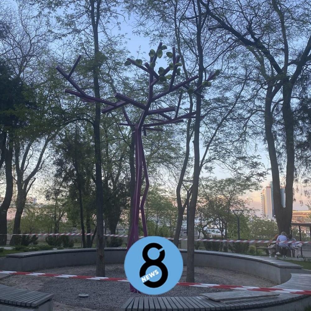 Надкушенные плоды на розовом дереве // В Греческом парке появилась райская яблоня
