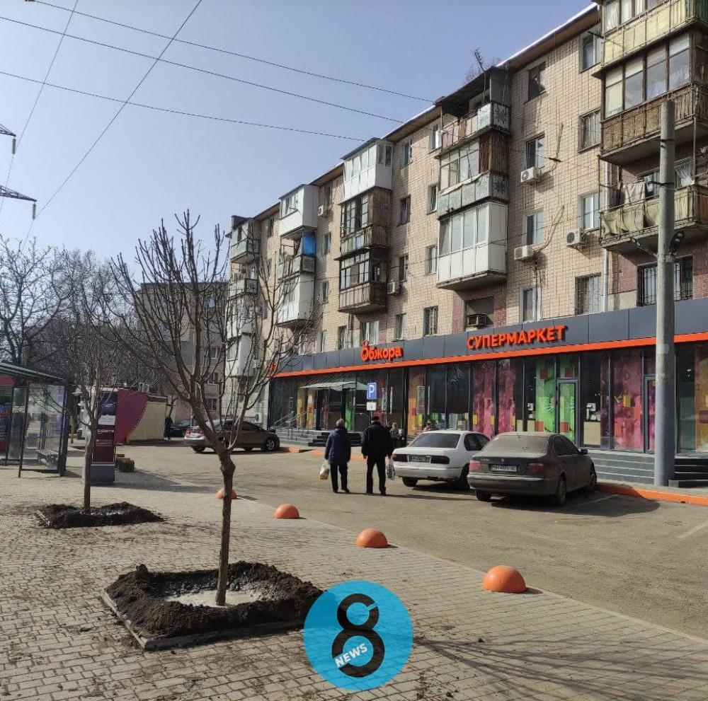 Одесские коммунальщики высадили деревья вместо срубленных на парковке супермаркета