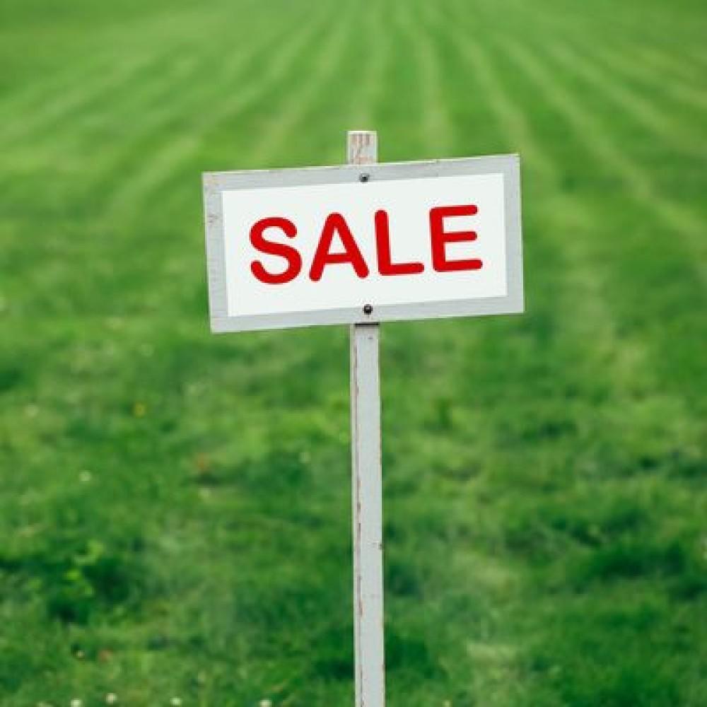 По 100 га в одни руки // С 1 июля в Украине запустился рынок земли