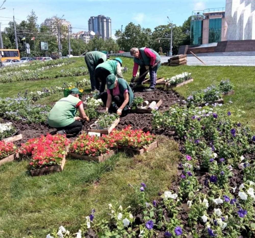 В Одессе реализуют план по высадке 700 цветов