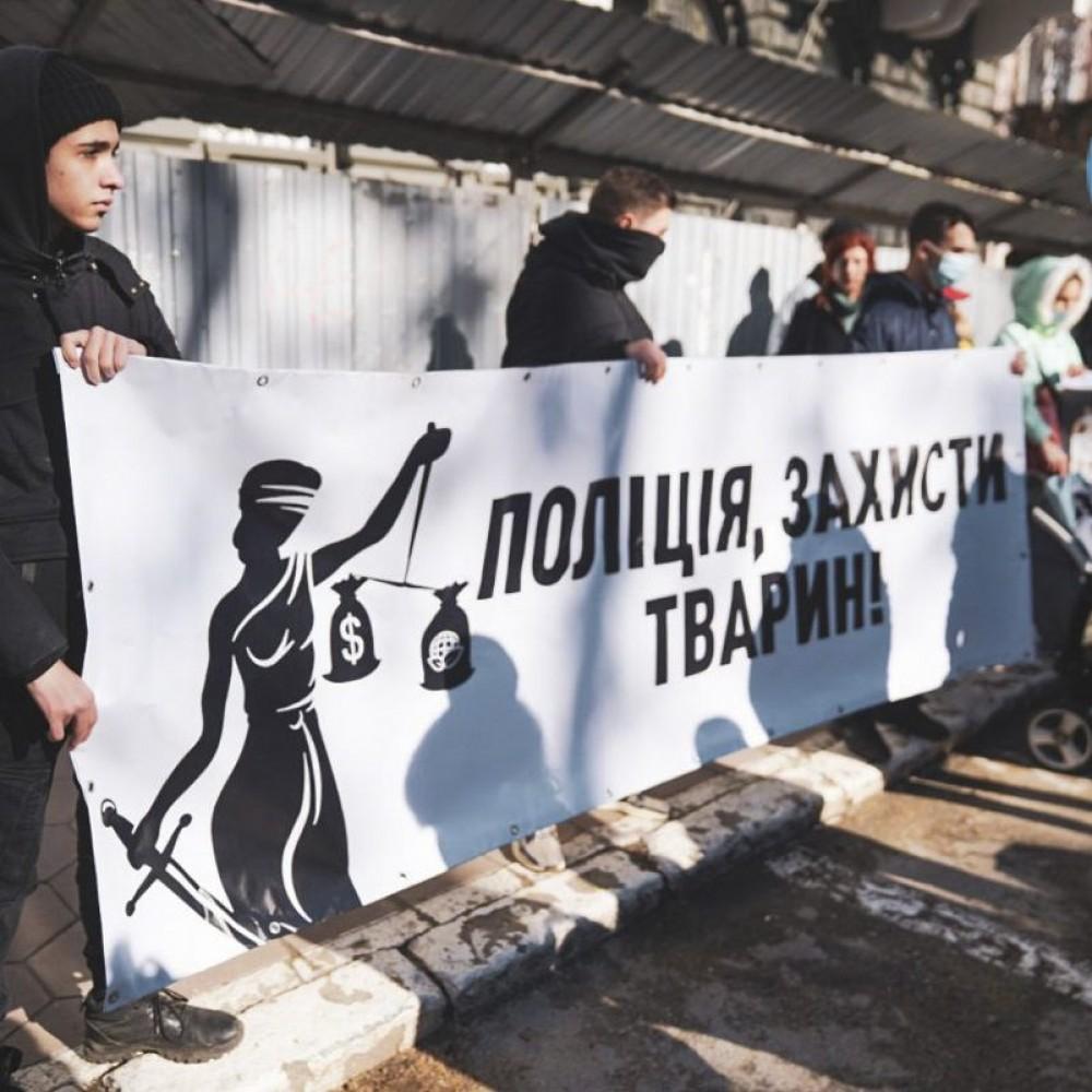 Убийцы животных должны сидеть в тюрьме // Митинг зоозащитников в Одессе